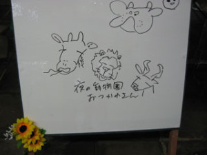 yoruira